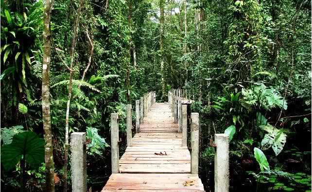Bonny nature park, Finima